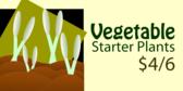 Starter Plant Deal
