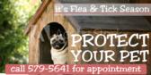 Flea & Tick Season