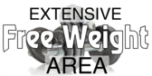 Extensive Free Weight Area
