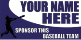 Sponsor This Baseball Team Purple