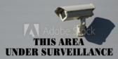 Community Surveillance