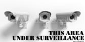 Community Surveillance B