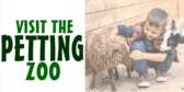 Visit the Petting Zoo