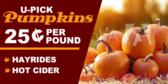 Pumpkins & Hayrides
