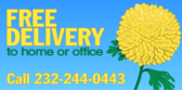 Free Deliver Home Office