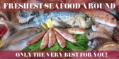 Fresh Seafood Only the Best