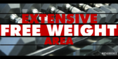 Extensive Free Weights