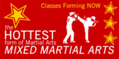Hottest Martial Arts