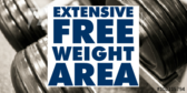 Free Weight Area Yellow