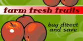 Fresh Fruit Buy Direct and Save