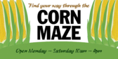 Corn Maze (Find Your Way Through)