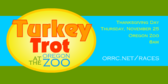 Turkey Trot at the Zoo