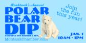 polar-bear-dip