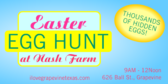 Easter Egg Hunt at Nash Farm