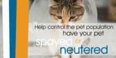 Spay/Neuter Your Pets