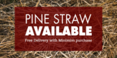 Pine Straw Available