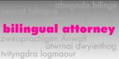 Bilingual Attorney Multi Language