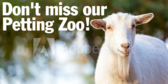 Dont Miss Our Petting Zoo