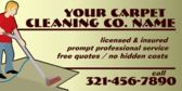 Generic Carpet Cleaning and Information