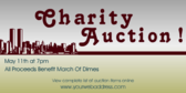 Charity Auction Benefit