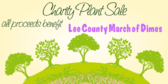 Plant Sale for Charity