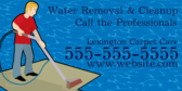 Water Removal Service