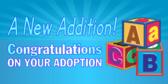 New Baby 12 Adoption