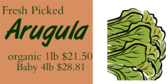 Arugula with Price