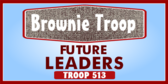 Generic Brownie Troop ID