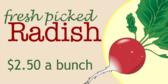Radish Vegetables