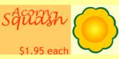 Acorn Squash with Price