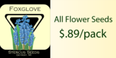 Flower Seed Packs