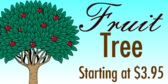 Fruit Tree For Sale