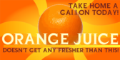 Orange Juice Doesn't Get Any Fresher Than This