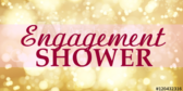 Engagement Shower Satin