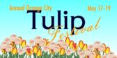 City Tulip Festival
