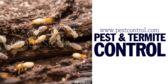 Pest and Termite Control Message