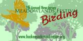 Annual Festival of Birding