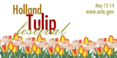 Dutch Tulip Festival