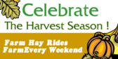 Celebrate The Harvest Season