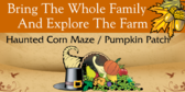 Bring The Whole Family And Explore The Farm