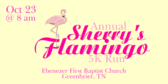 Annual Sherrys Flamingo 5K Run