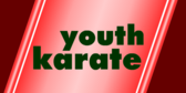 Youth Karate Red Stripes