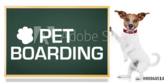 Pet Boarding Paw Print