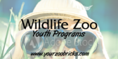 Zoo Youth Program Information
