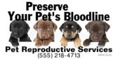 Pet Reproductive Services