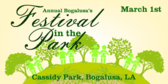 Annual Festival in the Park