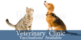 Pet Vaccination Message