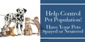 Help Control Pet Population
