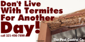 Don't Live with Termites Another Day